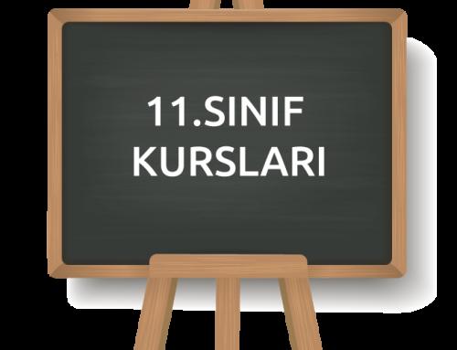11.SINIF