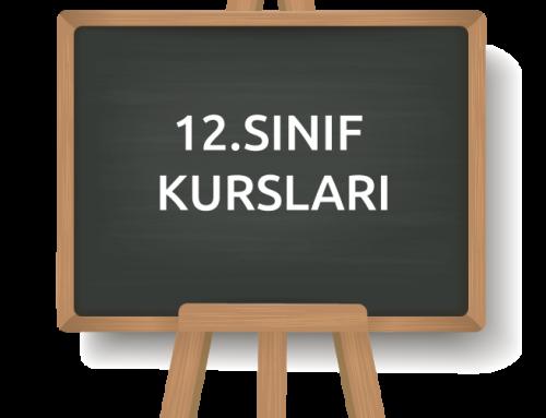 12. SINIF
